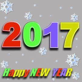 5 résolutions pour réussir 2017